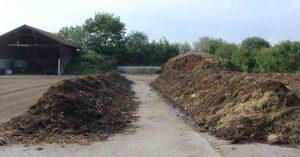 Cải tạo đất bằng phân chuồng