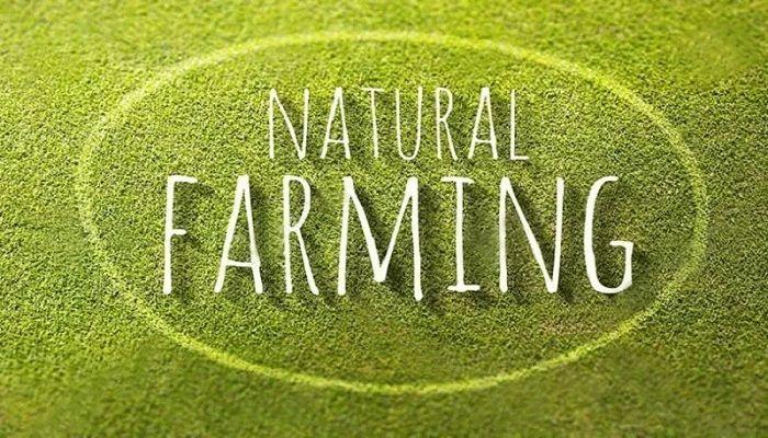 nông nghiệp tự nhiên