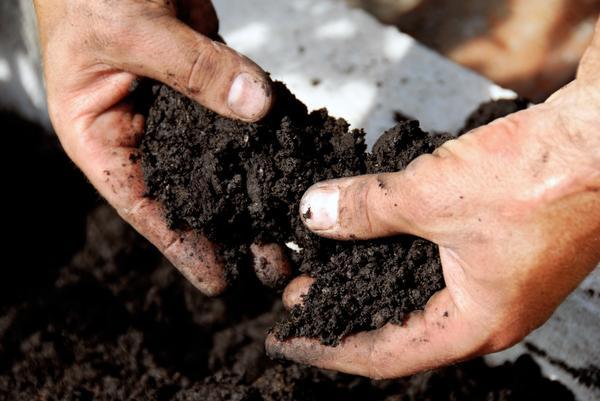 đất là gì? Đất là một thực thể tự nhiên