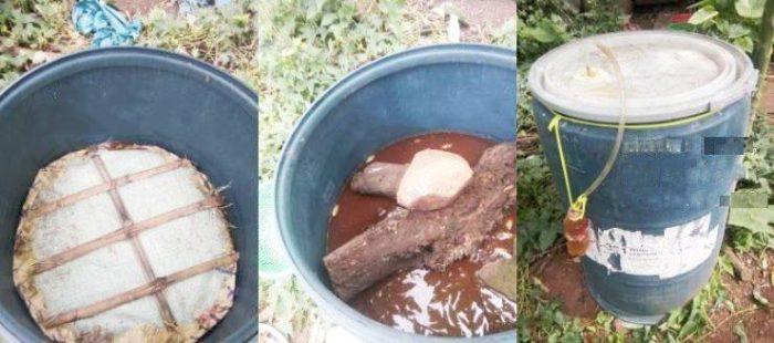 Cách ủ phân cá