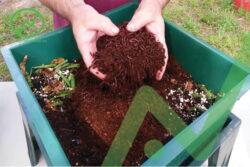 Tác dụng của phân trùn quê