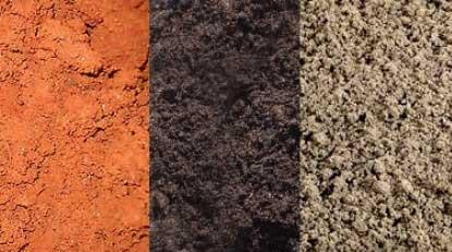 Có 3 loại đất chính là đất cát, đất sét và đất mùn