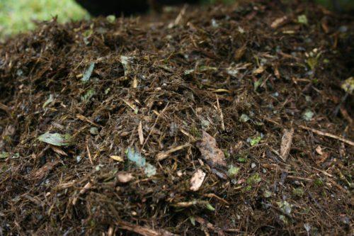 Đất cằn cỗi thiếu tơi xốp sẽ ảnh hưởng đến sự phát triển của cây trồng, do đó để cải thiện hãy thêm nhiều chất hữu cơ vào đất