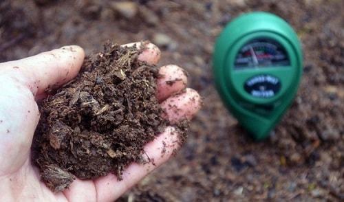 Hầu hết các sinh vật đất (đặc biệt là các loại vi khuẩn) đều sống tốt ở pH từ 6,5 đến 7,5.
