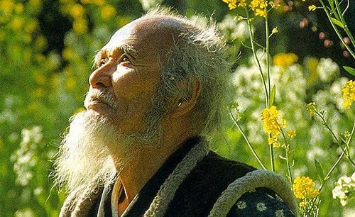 Masanobu Fukuoka là lão nông độc đáo người Nhật Bản