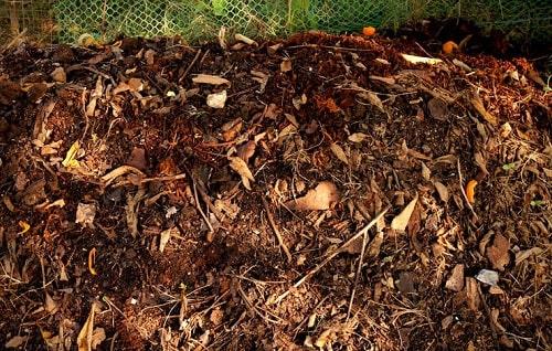 Phân ủ cung cấp dinh dưỡng trong canh tác