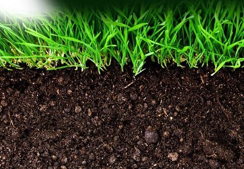 Bón thêm tro, vôi, tăng cường vật liệu hữu cơ,  vi sinh vật để ổn định độ pH đất