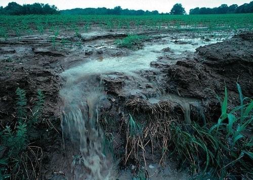 Mưa gió, lũ lụt là những nguyên nhân gây xói mòn đất