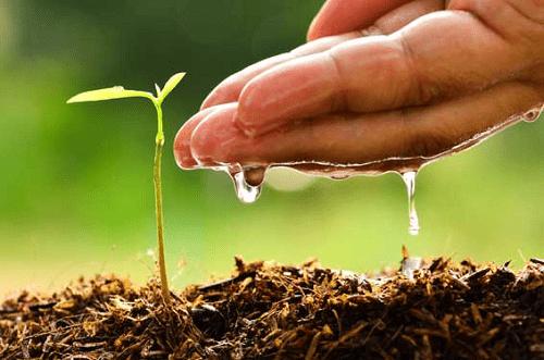 Quản lý nước hiệu quả giúp canh tác tốt hơn