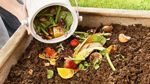 làm đất giàu dinh dưỡng bằng những vật liệu sẵn có tại gia đình như rác hữu cơ