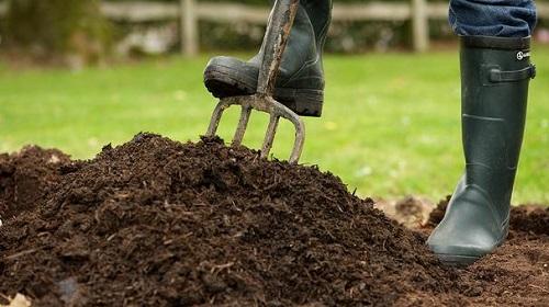 Trong quá trình cải tạo đất cần phải thường xuyên bổ sung hữu cơ như chất hữu cơ, phân hữu cơ