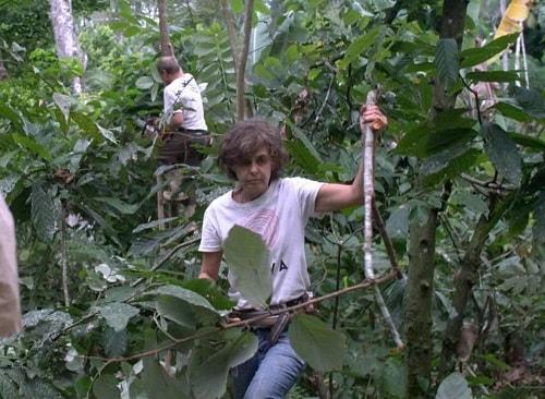 Cắt tỉa trong khu vườn của Ernst