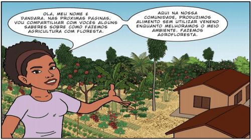 Nông nghiệp sinh thái vườn rừng là cách thức canh tác theo nông lâm kết hợp