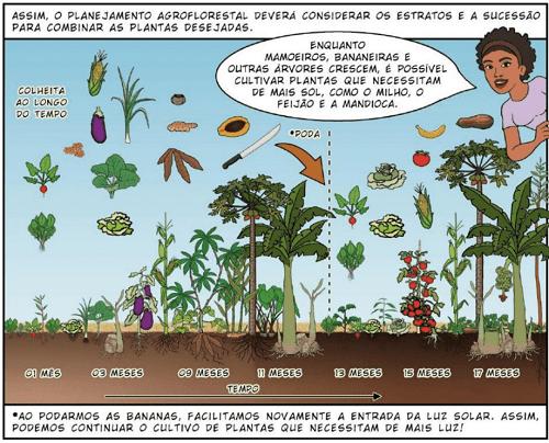 thu hoạch theo thời gian