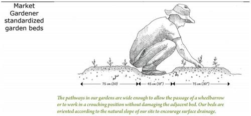 phủ hữu cơ lên bề mặt là biện pháp tăng chất lượng nền đất trong sinh thái vườn rừng