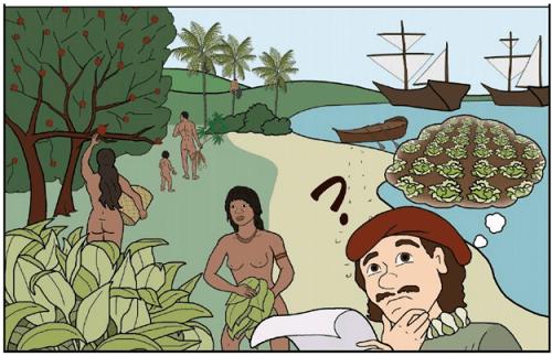 Sản xuất thực phẩm trong rừng là một kiến thức rất cổ xưa đã có mặt từ lâu