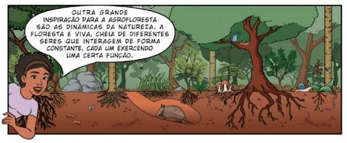 Trong rừng có mặt rất nhiều sinh vật
