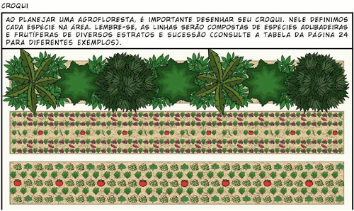 vẽ ra bản phác thảo trong kế hoạch xây dựng vườn rừng