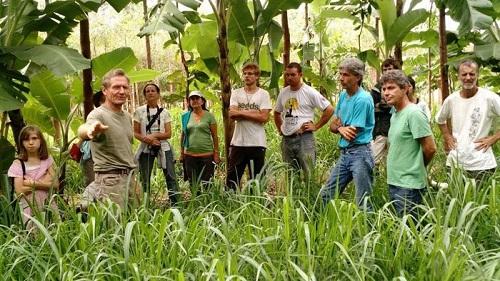 mô hình vườn rừng của Ernst đã thành công ở quy mô lớn và kết nối được nhiều cộng sự