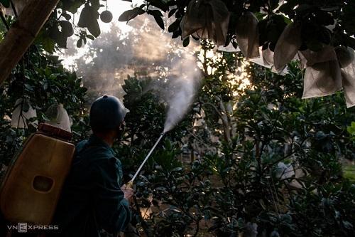 Thuốc bảo vệ thực vật được sử dụng liên tục
