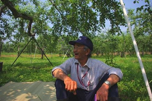Ông Kimura đã nhận ra bí mật của nông nghiệp không hóa chất
