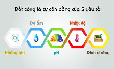 Đất sống là sự cân bằng bởi 5 yếu tố: pH, Nhiệt độ, Độ ẩm, Không khí, Dinh dưỡng