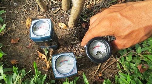 Để đo pH đất có thể dùng máy đo hoặc giấy quỳ