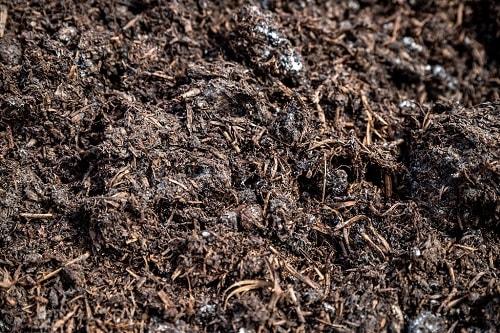 Sử dụng phân hữu cơ giúp cải thiện cấu trúc đất, cung cấp dinh dưỡng,...