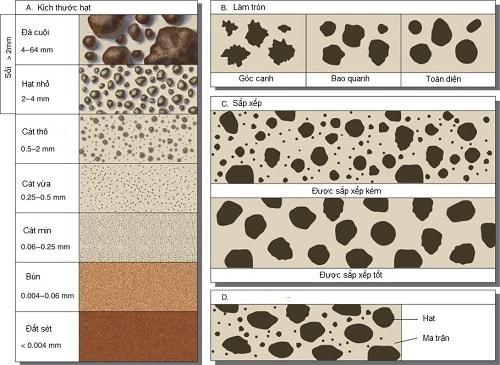 cách nhận biết chất đất thông qua kết cấu các hạt kết đất