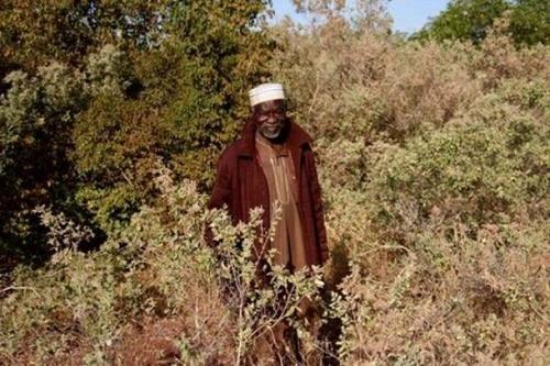 Yacouba Sawadogo Người đàn ông ngăn chặn sa mạc hóa bằng cách làm nông nghiệp cổ đại