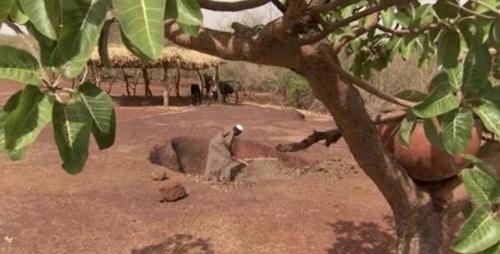 người đàn ông ngăn chặn sa mạc hóa bàng nông nghiệp cổ đại