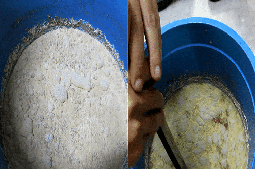 ủ đậu tương bón cho cây trồng