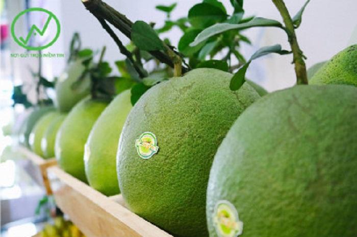 Sản phẩm bưởi da xanh được trồng theo hướng hữu cơ bày bán tại siêu thị