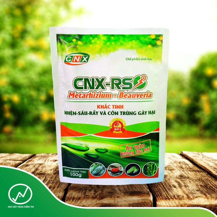 CNX-RS: khắc tinh của nhện